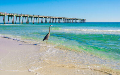 Pensacola Area Beaches Florida